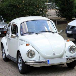 Käfer 1303